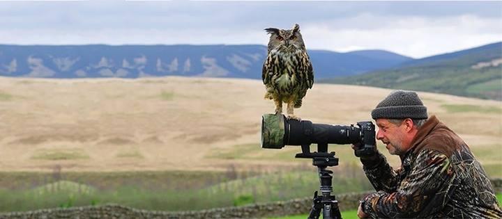 Os melhores momentos entre fotógrafos e animais